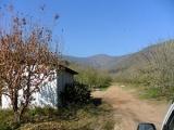Fundo Santa Teresa de Mallarauco